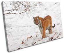 Tiger Wildlife Animals - 13-1494(00B)-SG32-LO